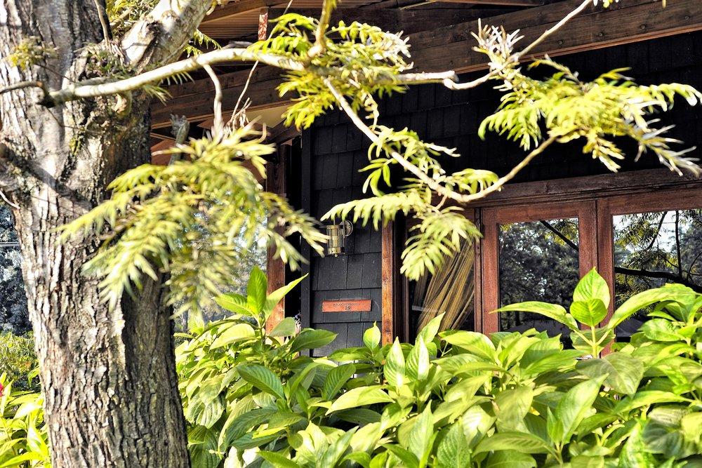 plantation suite exterior.jpg