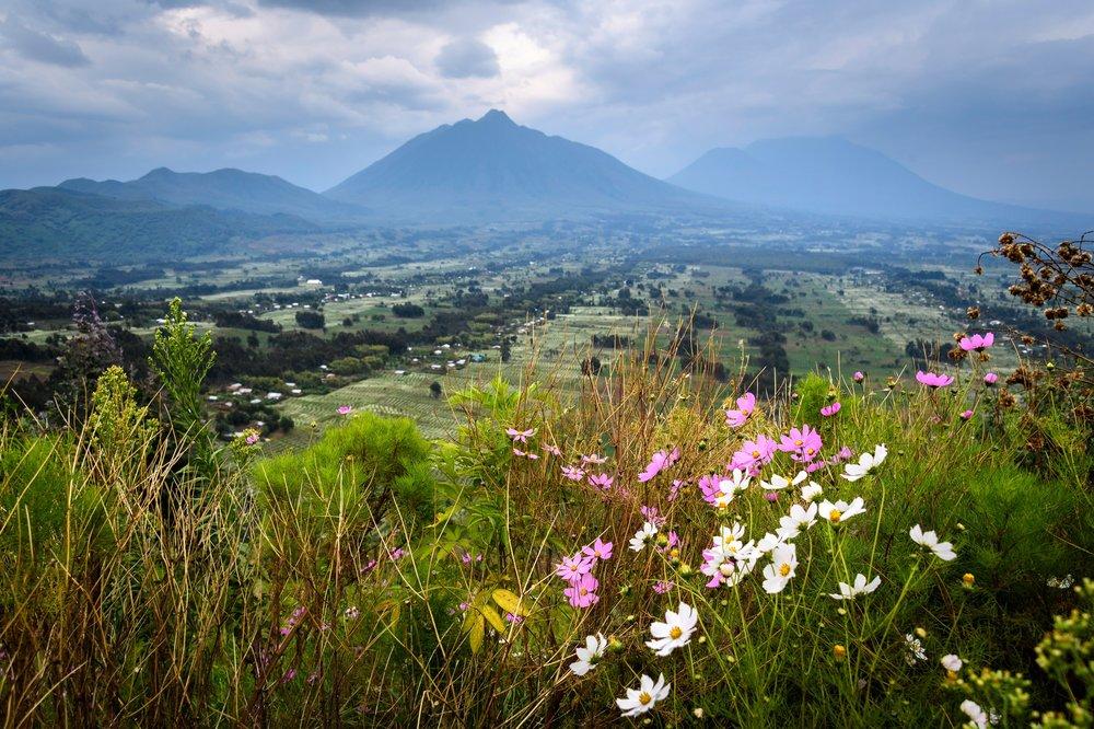 Rwanda-374.jpg