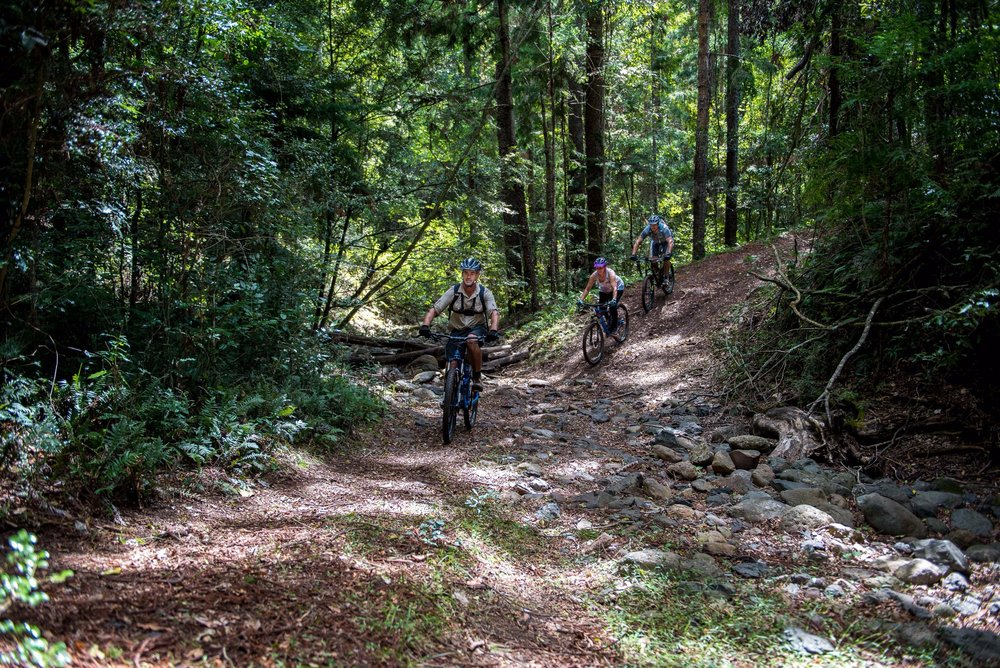 Mountain bike activity.jpg