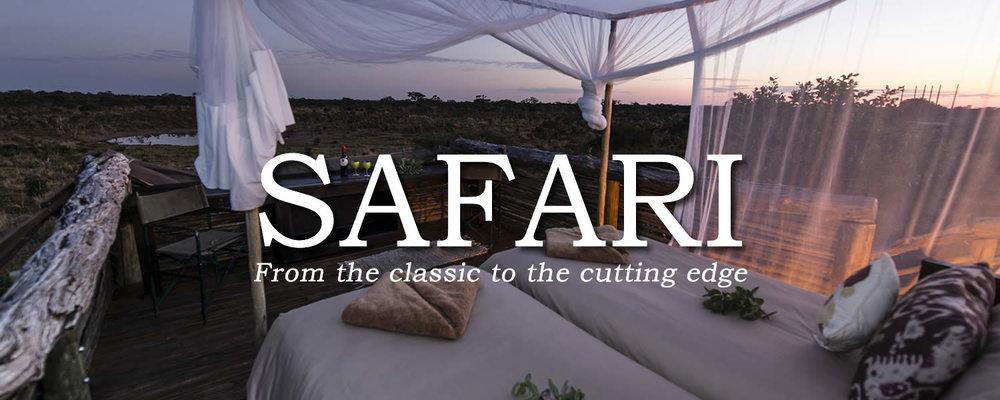 BANNER_safari_SKYBED2.jpg