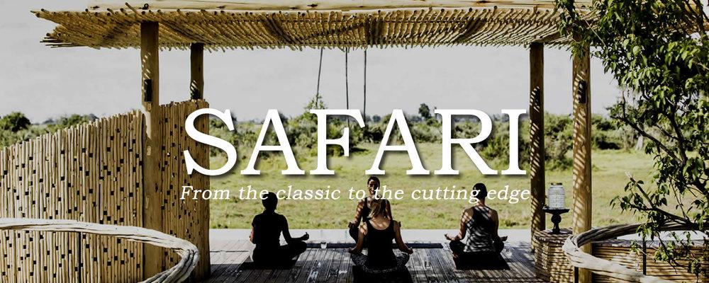 BANNER_safari_MEDITATION.jpg