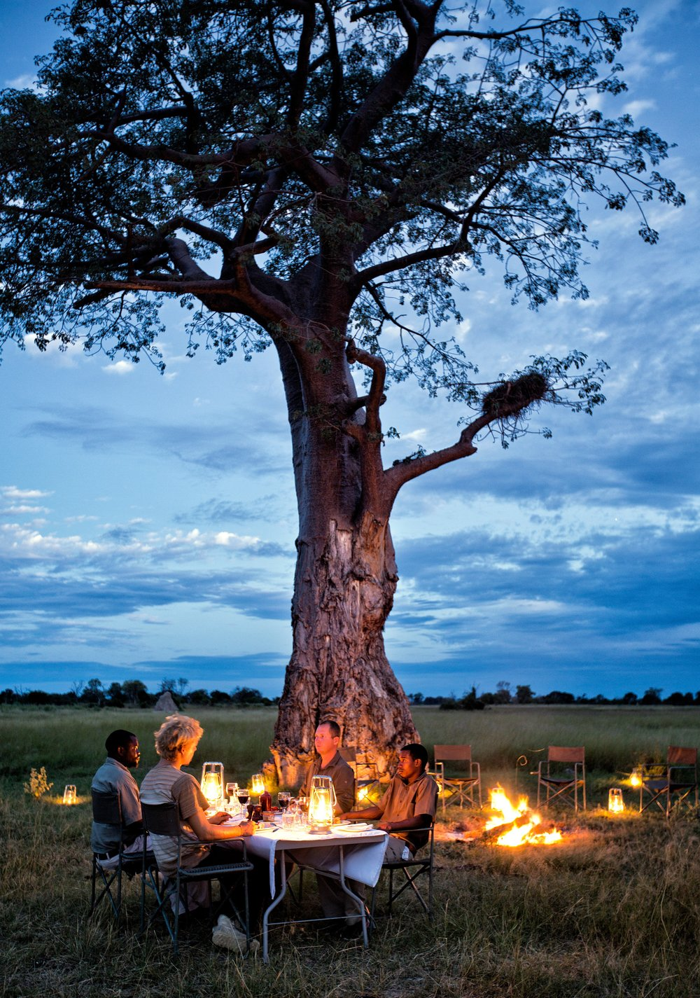 26Mapula Lodge - Fly dinner under the trees.jpg