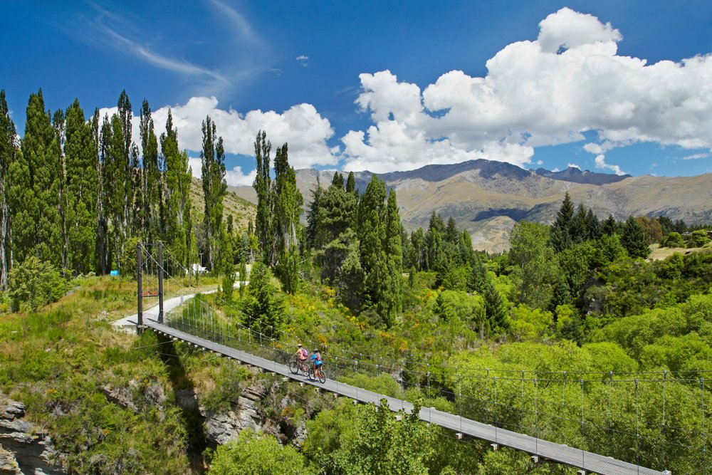 1241-David-Wall-Queenstown-Trail-Queenstown.jpg