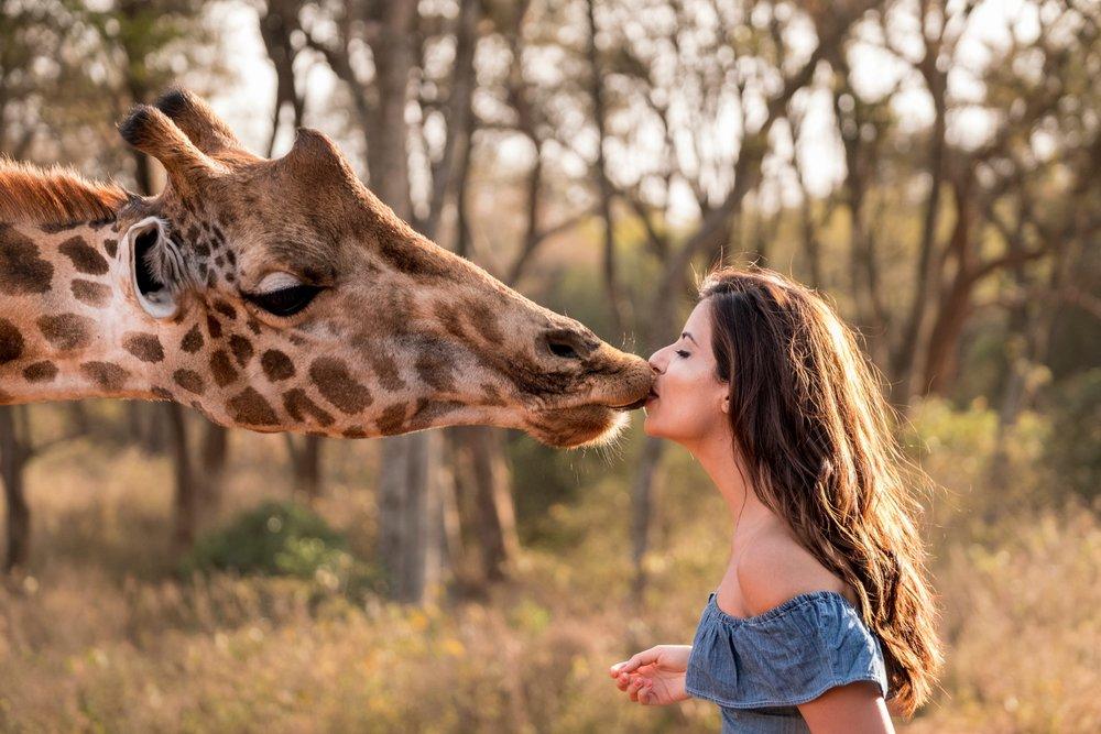 Friendly kisses .jpg