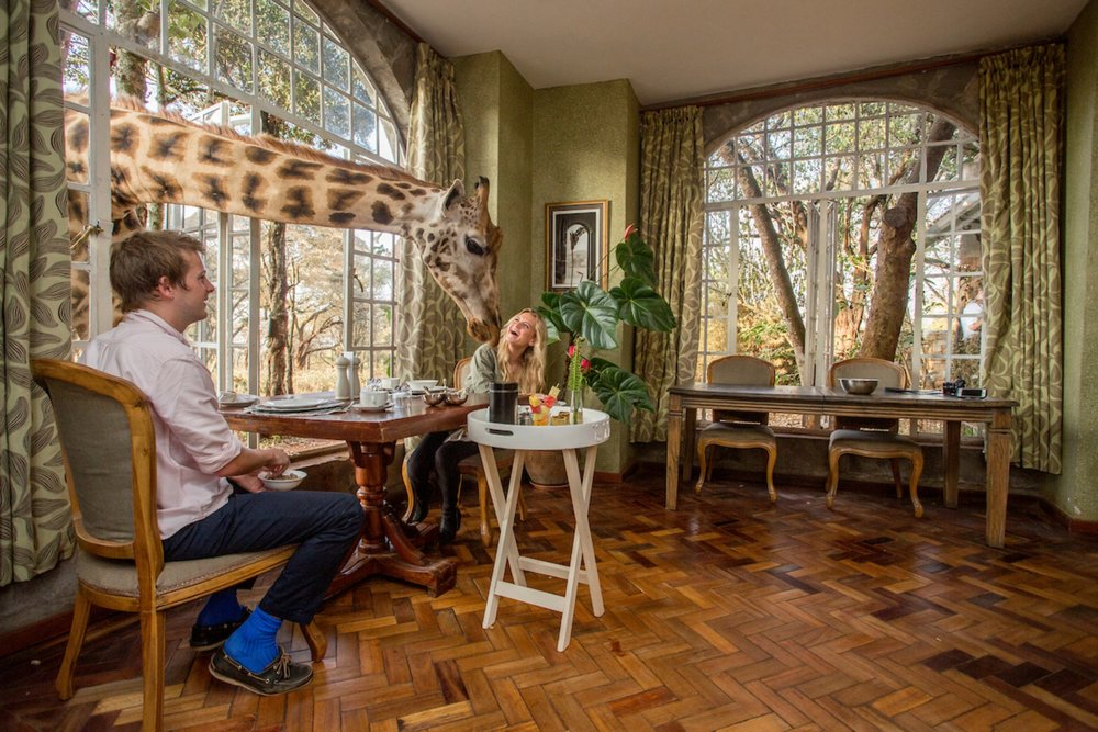 Garden Manor breakfast 2.jpg