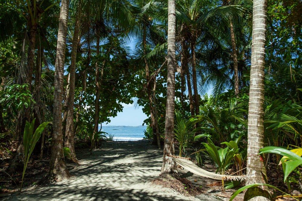 Isla Palenque-Bungalow Oceanview 3.jpg