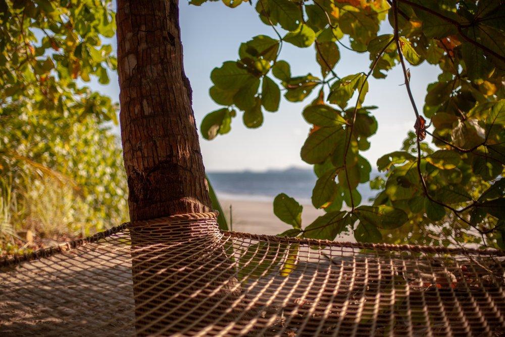 Isla Palenque-Hammock.jpg