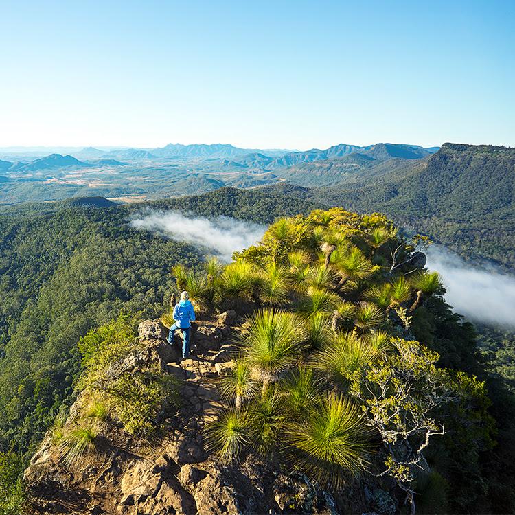 Main Range National Park |Scenic Rim Trail