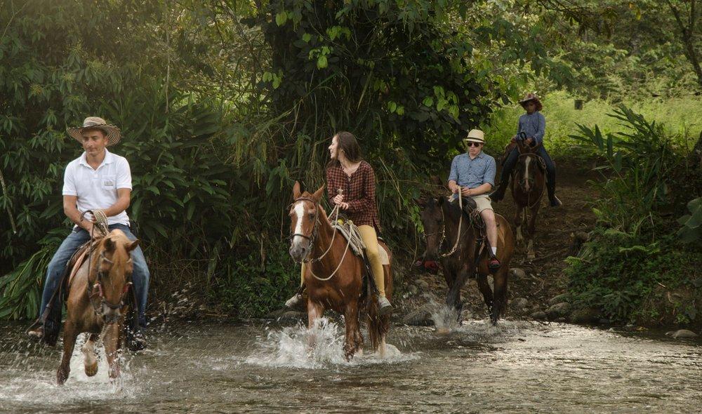 Excursions - Horseback (2) (1).jpg