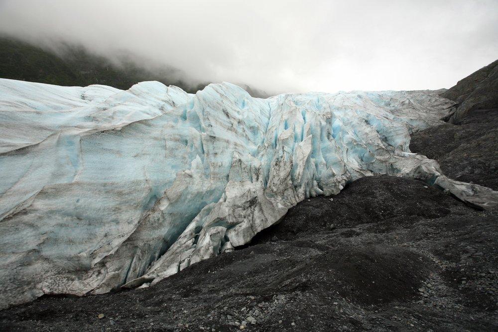 Photos  Brian Adams  Kenai Fjords National Park  110.jpg.jpg