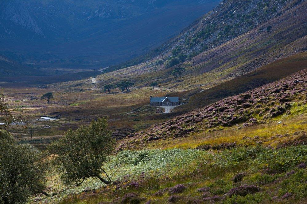 Cottage Eagle's Crag_Alladale Wilderness Reserve_Max MilliganPrint-60.jpg