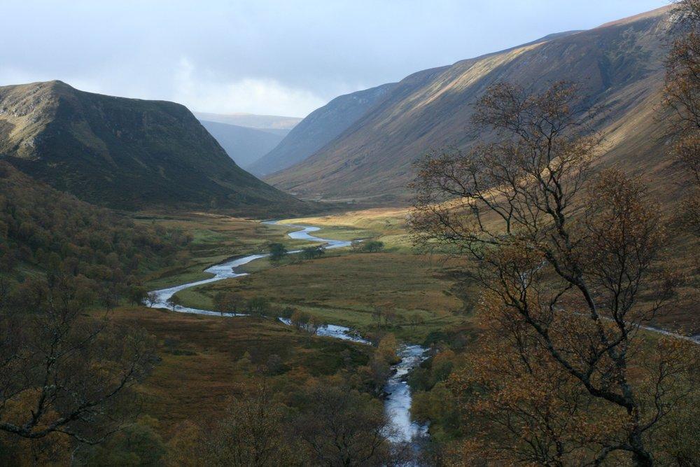 Landscape Alladale Wilderness Reserve_IMG_2745.jpg