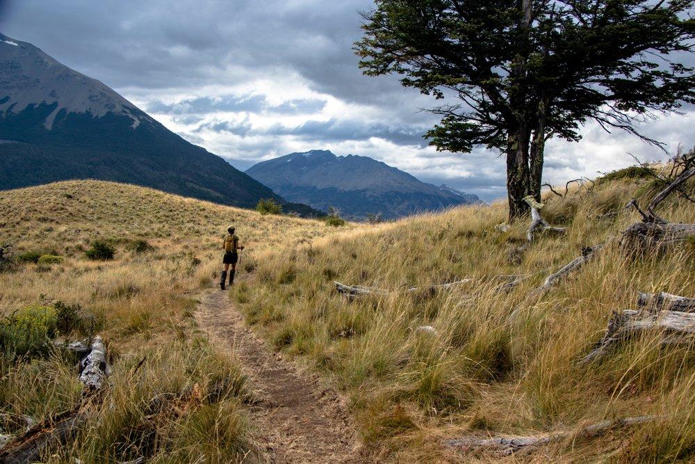 Lago_chico_trail.jpg