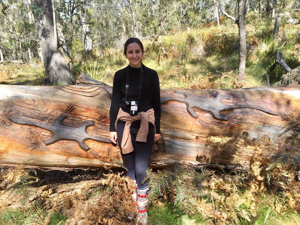 Miranda with...Lizards running along a 200 year old fallen gum tree.