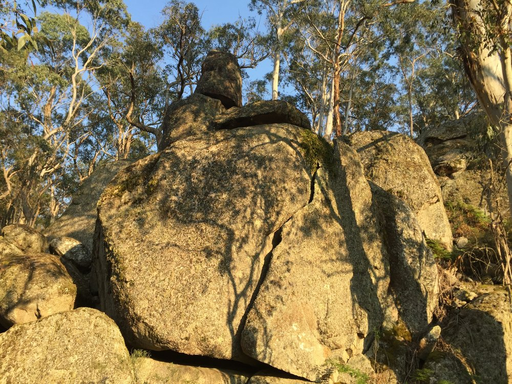 Ancient rocks are a home for quolls and wombats.