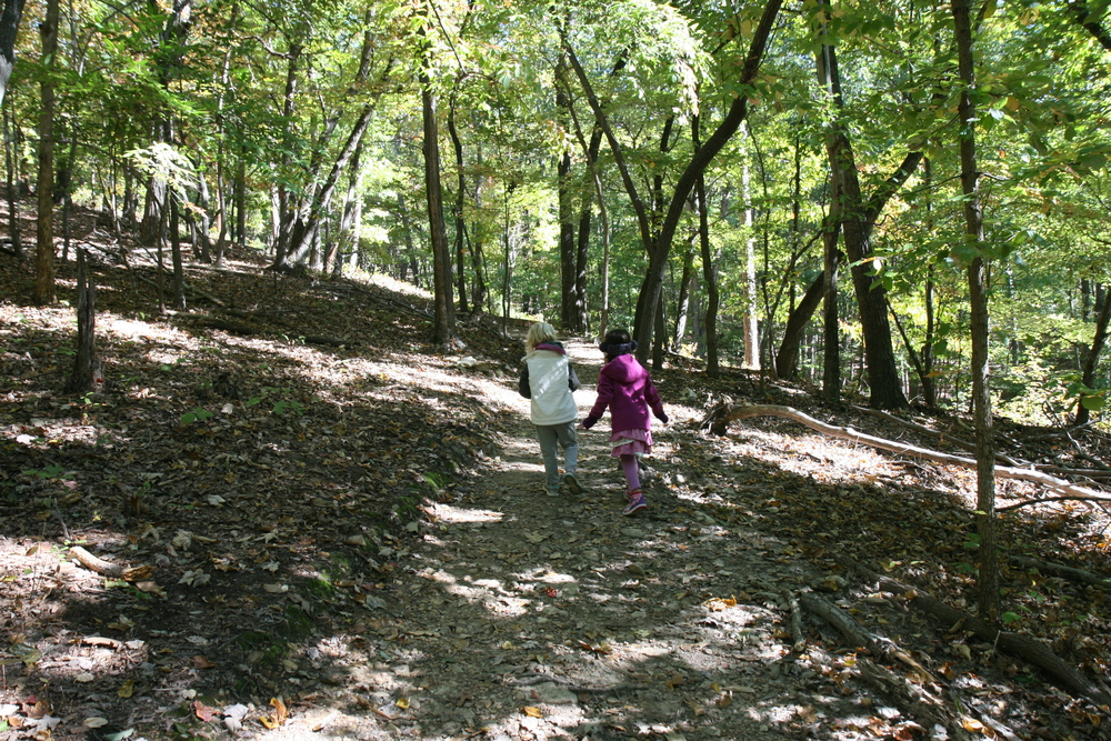 Click Here FOR A list of Carolina Parent's 10 Great hikes with kids in the Triangle!