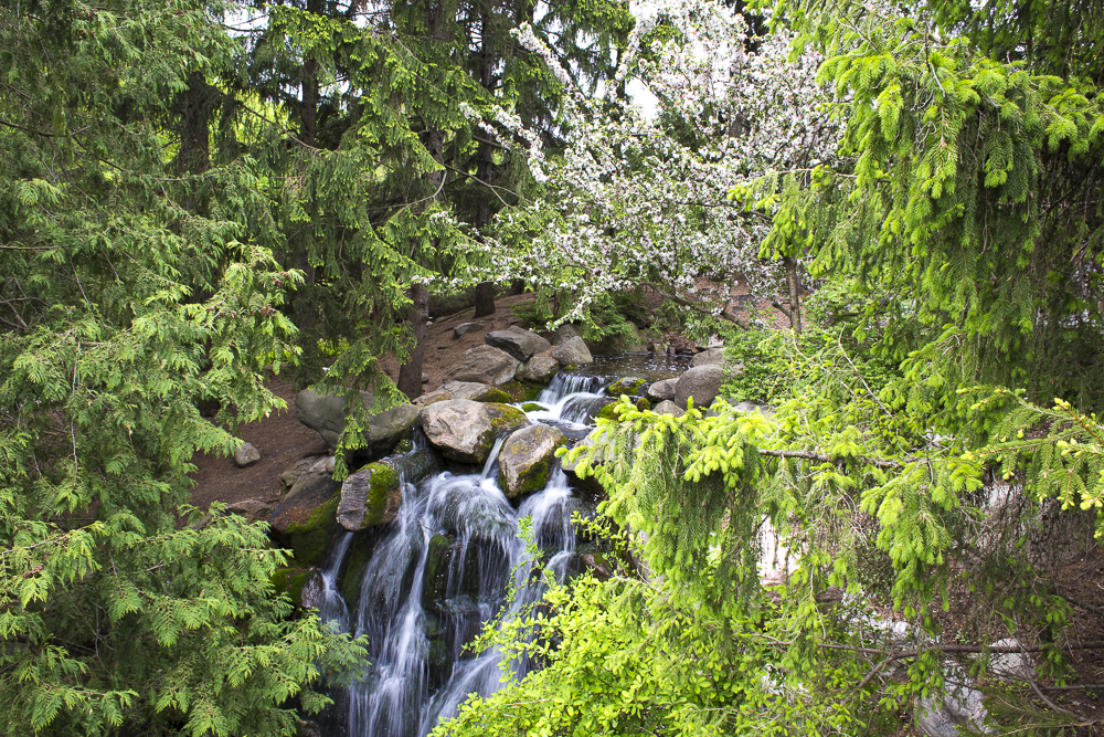 Small waterfall in the woods of Minnesota
