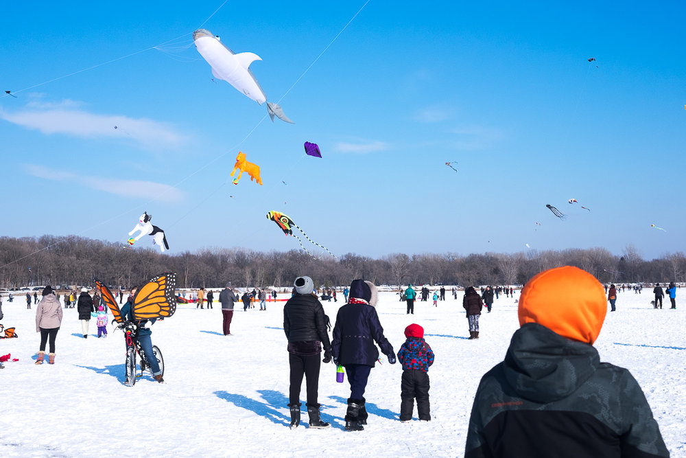 Kites and butterfly bicycles at Lake Harriet Winter Kite Festival, Minneapolis, Minnesota