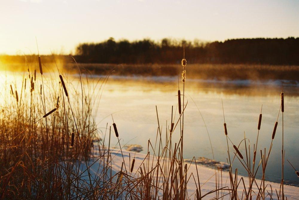 Fog on the river in northern Minnesota - Canon AE-1p on Ektar 100