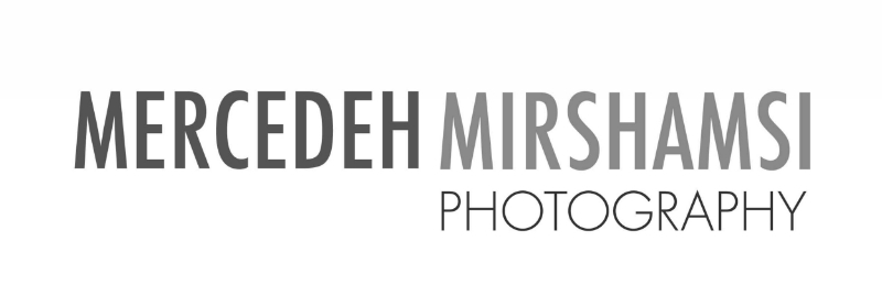 Mercedeh Mirshamsi Photography