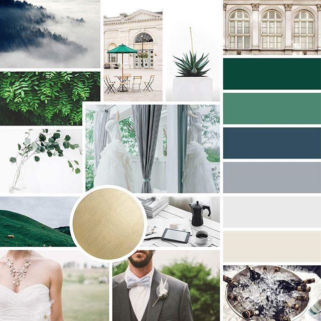 So, I've obviously been a bit MIA since Sherwood 3.0 came along (he's insanely sweet, by the way 😍👶🏼), but I wanted to share a mood board that I'm dying over right now for our lovely client, Aimee of @2chicevents