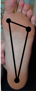 Tripod: Big toe knuckle, pinky toe knuckle & center of the heel.