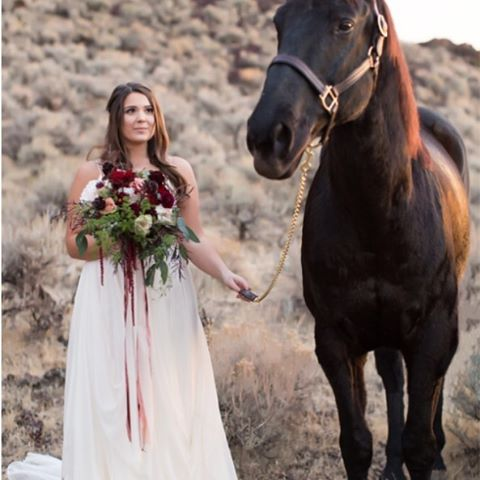 I'm obsessed with both of these creatures 👰🏻🐎