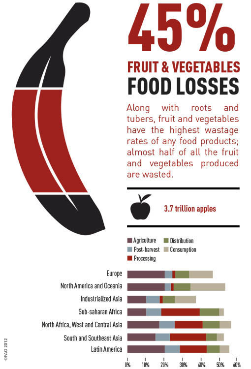 Fruits and vegetables have the highest rate of food wastage.