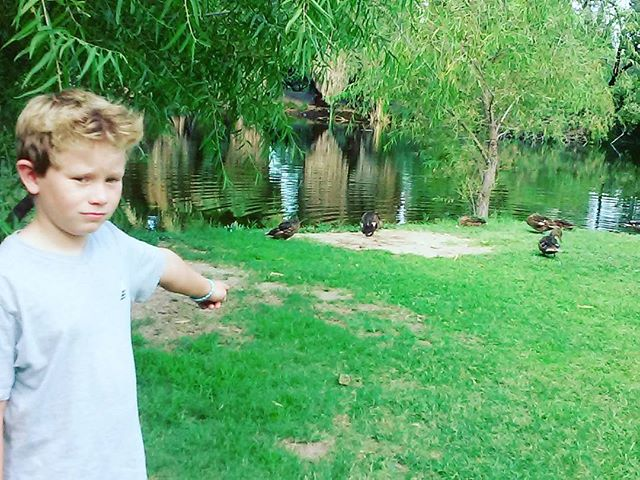 Found some ducks.He's not sure how he feels about this discovery