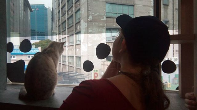 Me and my new best friend #catcafe #seoul