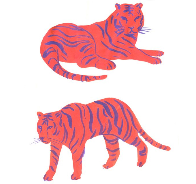 Tiger sketches by Leah Goren. Looking to live a more creative life? Check out the blog for some ideas and inspiration! www.abirdofpassage.com