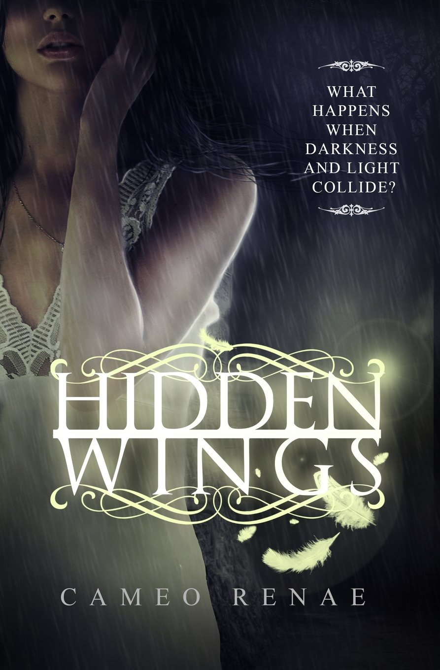 hidden wings.jpg