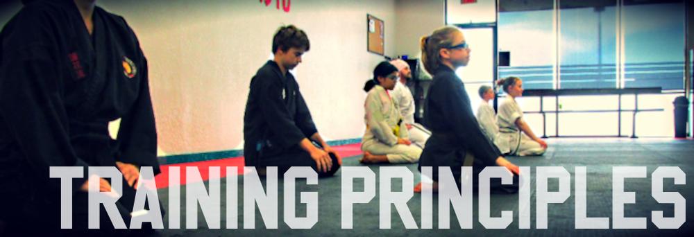 #pRINCI.png