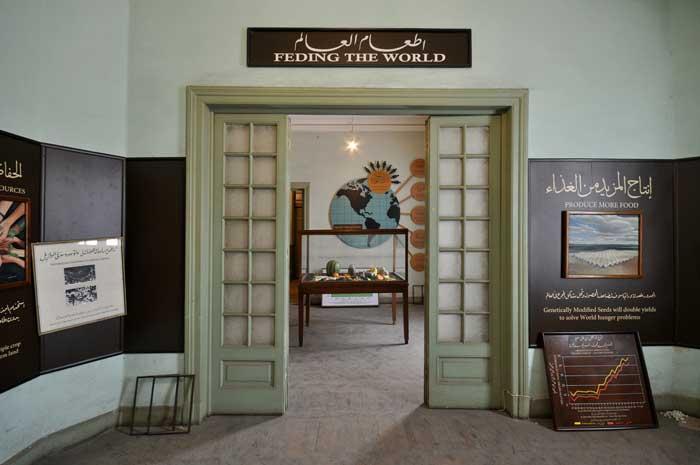 Museo Agrícola Mundial (WAM) - Asunción Molinos Gordo
