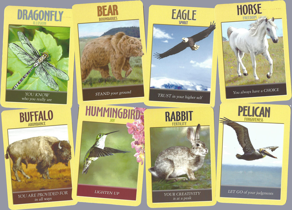 The spirit animals that the group responded to.