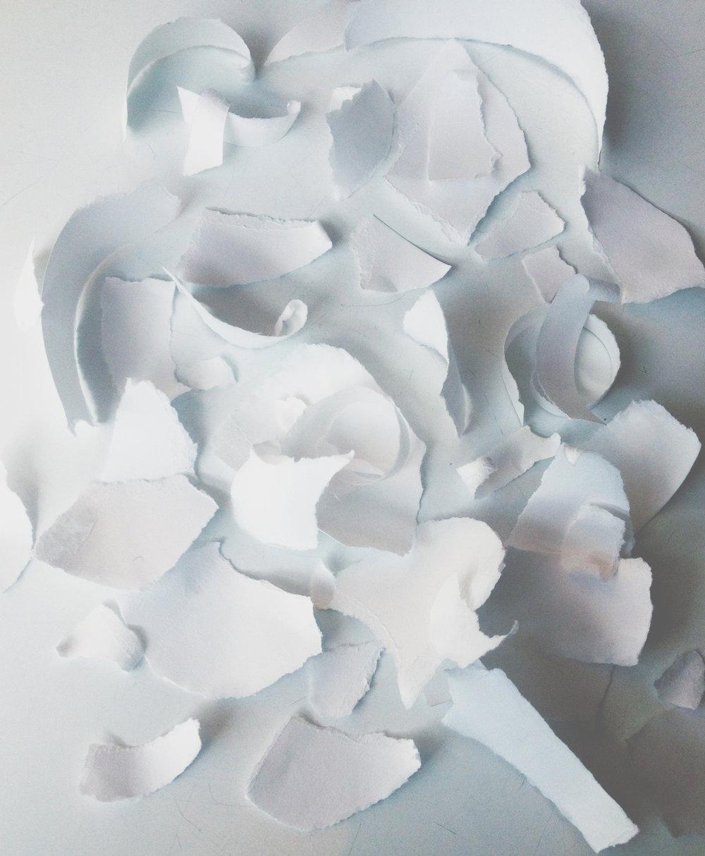 torn paper 1.jpg