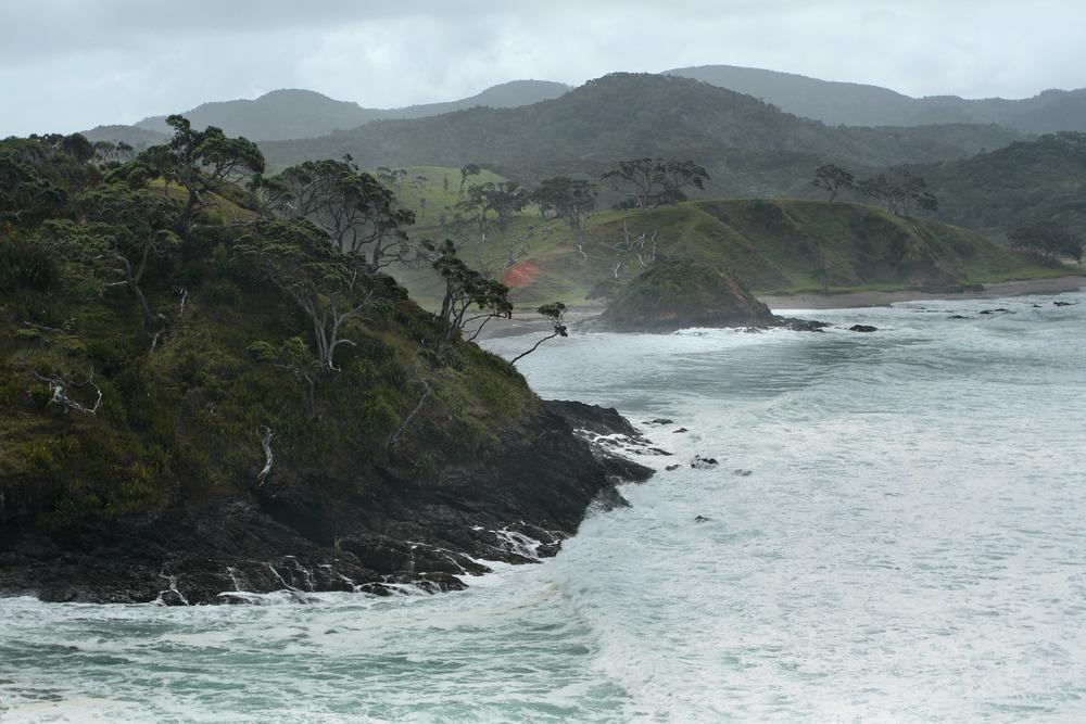 Bay of Islands Coastline | Reid Burchell Photography