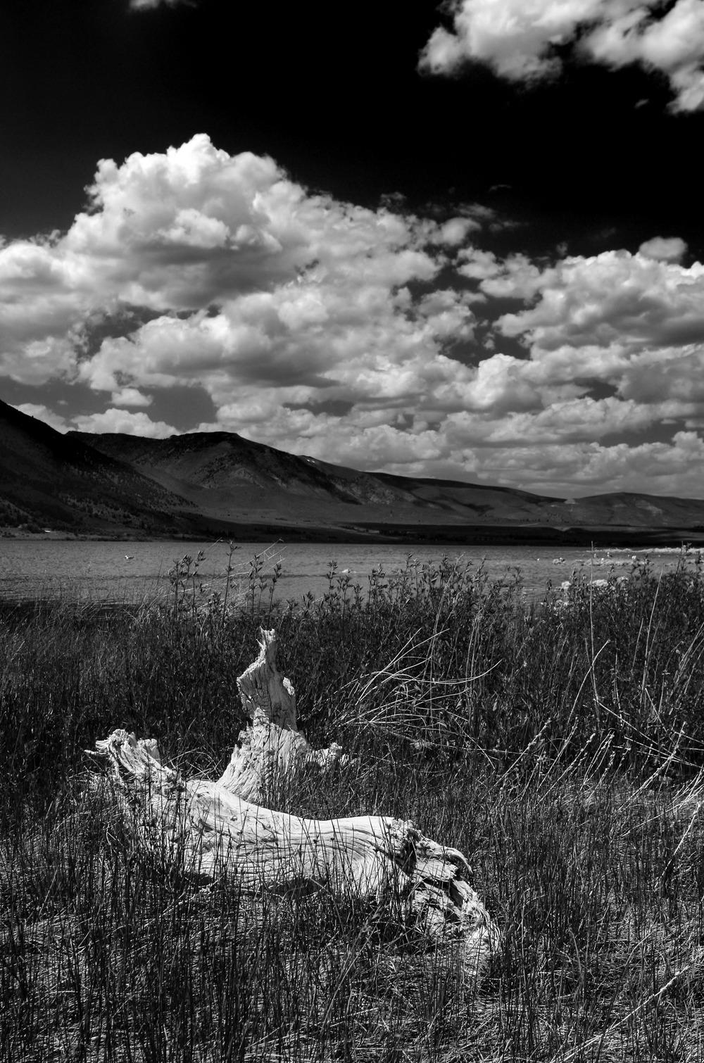 Mono Lake | Reid Burchell Photography
