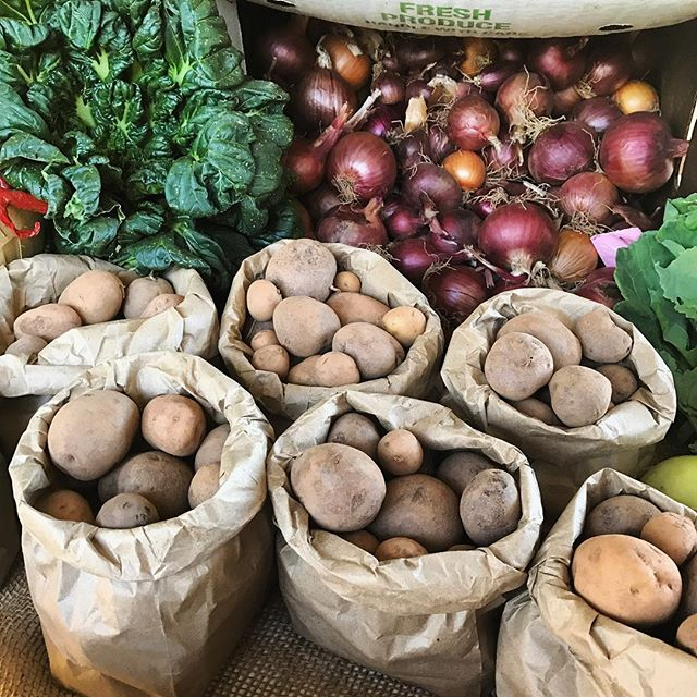 Mixed potatoes for our on-farm CSA members this week!