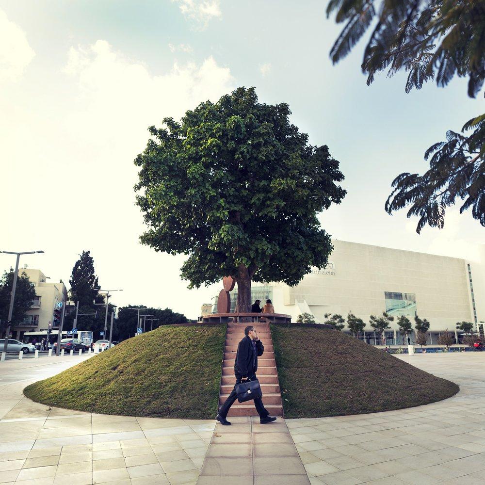 1man tree bima.jpg