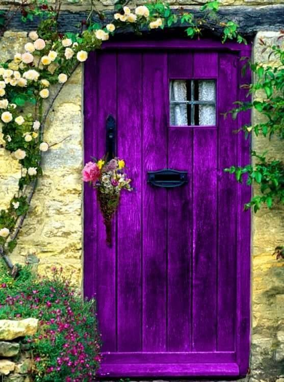 purple mayflower door.jpg