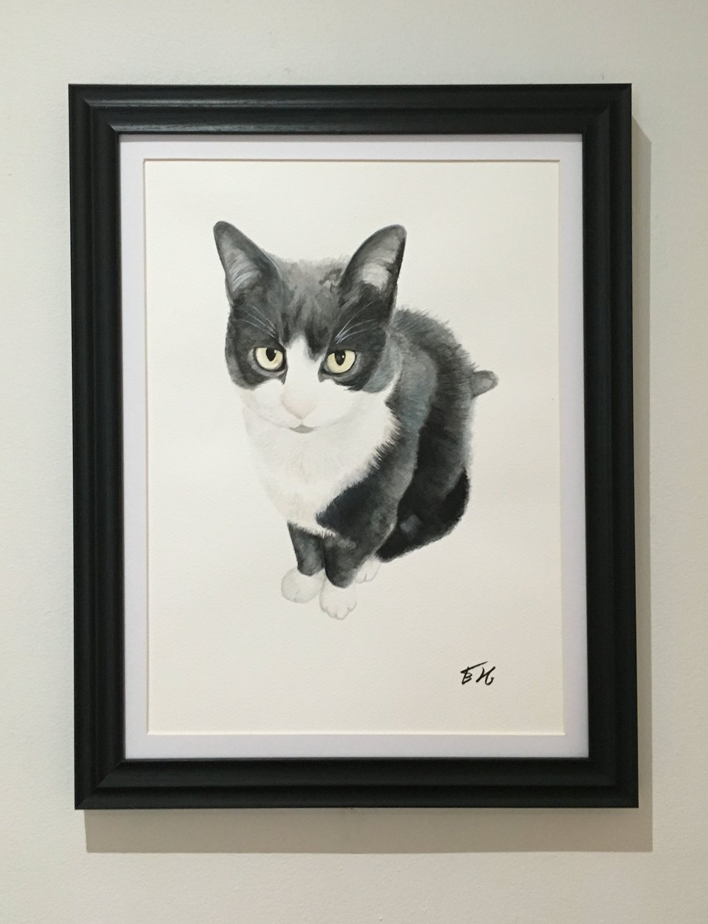 framed lous cat.jpg