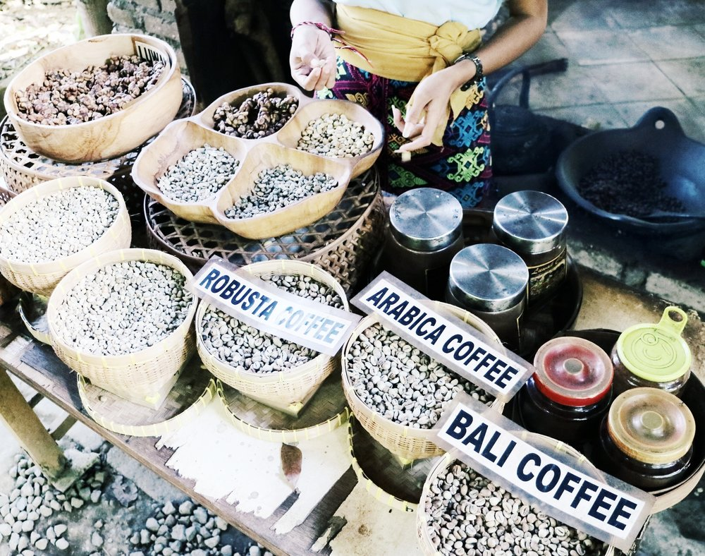 Coffee Tasting - CIVET COFFEE A.K.A.COFFEE LUWAK