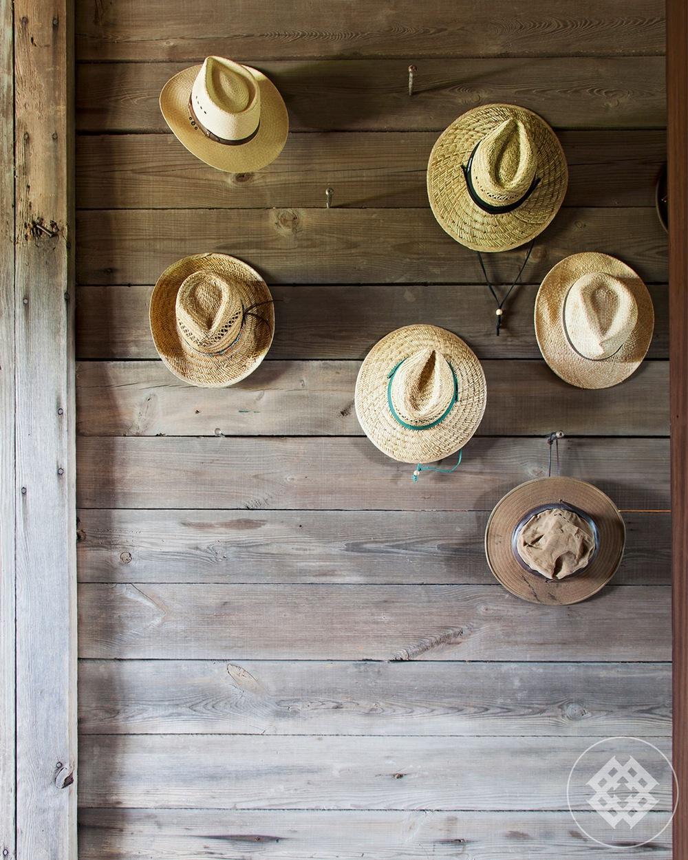 tss-hats233-1200x1500.jpg