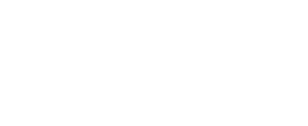 dnb logo hvit.png