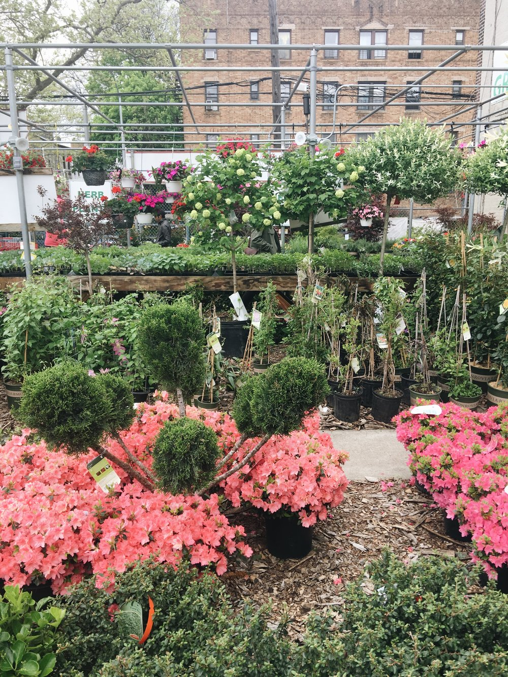 How to make a terrace garden - You Can Make These Principles Work Whether Your Outdoor Space Is A Yard Terrace Balcony Or Fire Escape Questionmark Is This Legal In Nyc