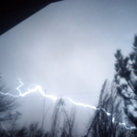"""FIERCE LIGHTNING"" TAKEN BY WISE OWL CARO"