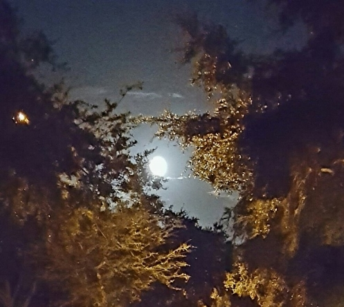 FULL MOON OF THE LIBRA CYCLE.  TAKEN BY WISE OWL BRENDA