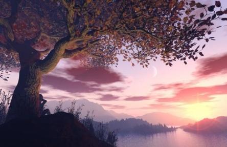 bigstock-a-dreamer-sitting-under-a-tree-13752221_0.jpg
