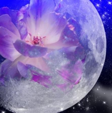moon_flower_by_darla_illara.jpg